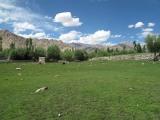 ladakh02