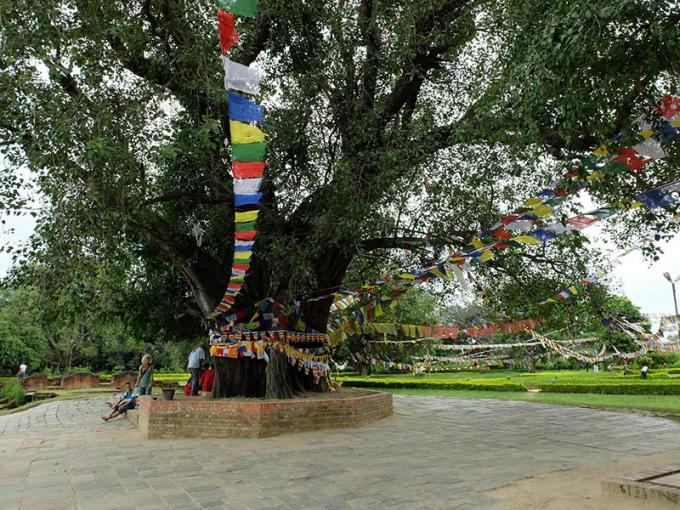 Lumbini Népal