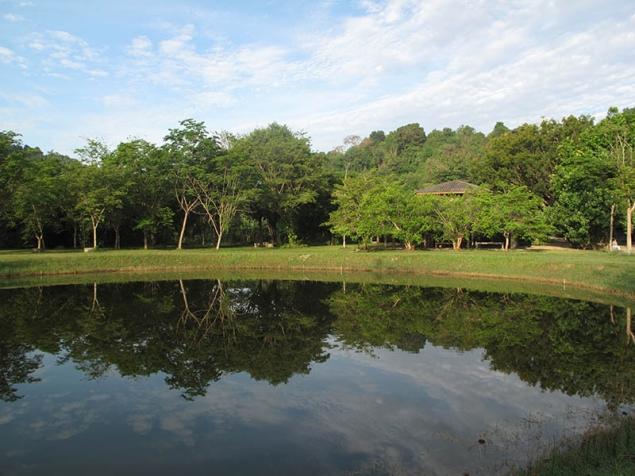 Wat Suan Mokkh Retraite 1