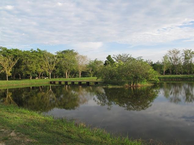 Wat Suan Mokkh Retraite 2