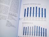 Rapport admin Ville de Meyrin