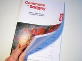 Rapport admin Commune Satigny